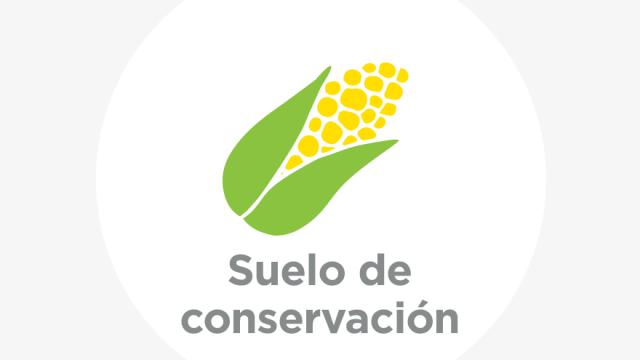Conservación y prevención de incendios en suelo de conservación
